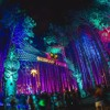 Electric Forest 2017 FULL SET