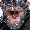 WAR FOR THE PLANET OF THE APES - Double Toasted Audio Review
