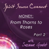 Money: From Thorns to Roses Part 2 - Clearing the Subconscious