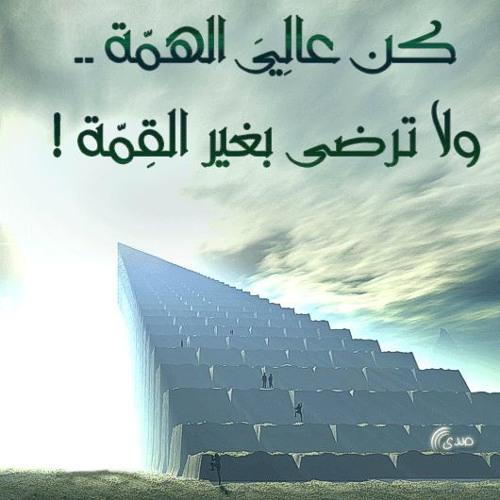 كن عالى الهمة ولا ترضى بغير القمة By Ahmed M Abdelkaowy