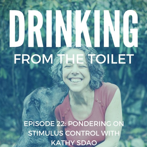 #22: Pondering on Stimulus Control with Kathy Sdao