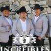 HUAPANGO  BAILANDO EN LOS JARIPEOS  INCREIBLES HUAPANGO REMIX  YouTube-MP3.mp3