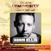 Adam Ellis @ Luminosity Beach Festival Bloemandaal 2017-06-23 Artwork