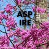 Sesame Street theme song (Airhorn remix)