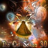 The Cat Session 3.0