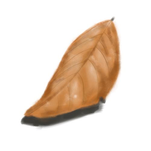 The Falling Leaf Has a Purpose