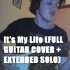 Bon Jovi - It's My Life (FULL GUITAR COVER + EXTENDED SOLO)