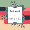 Padovan9 - Look Into My Eyes (Original Mix)