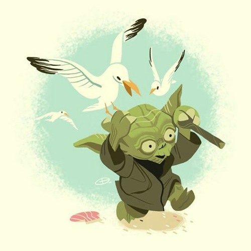 7f344495566 Seagulls - Stop it now - Yoda - StarWars - A Bad Lip Reading of the Empire  Strikes Back by Copperfox