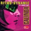 Laurent Wolf Feat. Ritmo Dynamic - Calinda (Nikolay Suhovarov Bootleg)