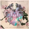 Download Bring Me The Horizon - Can You Feel My Heart (Hectic Remix) Mp3