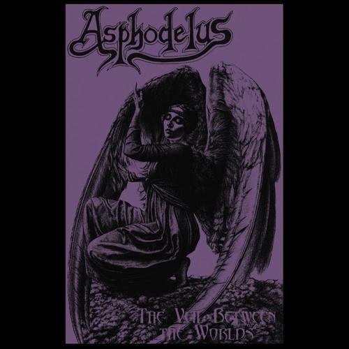 Asphodelus - Scent Of Venus
