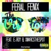 The Vision (Ft. E-Roy, XM4RCSTHESPOT) - Feral Fenix