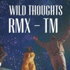 Wild Thoughts REMIX by DJ Khalid Ft Rihanna and BT