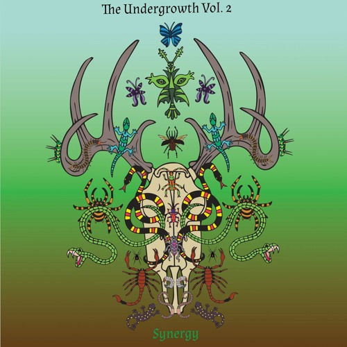 VA - The Undergrowth Vol.2 SYNERGY (LP) 2017