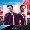 Zedd & Liam Payne - Get Low (Acoustic)