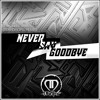 Hardwell & Dyro feat. Bright Lights - Never Say Goodbye(Teardrops Bootleg)