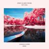 Zedd & Liam Payne - Get Low (Juha & Clasio Remix)