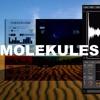 MOLEKULES for KONTAKT & VST/AU