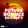 Future Bounce Sounds 2 | 3 FL Studio Templates, 370+ Drums, Melodies & Presets