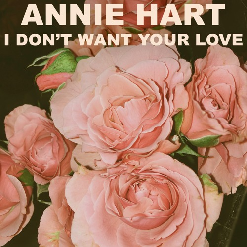 I Don't Want Your Love