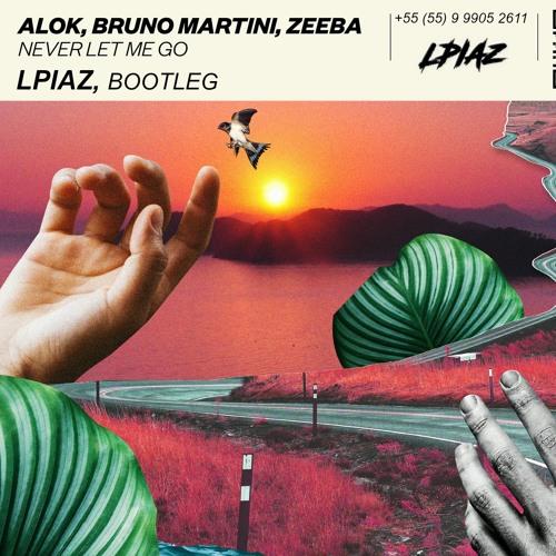 Baixar Alok, Bruno Martini ft. Zeeba - Never Let Me Go (LPIAZ Bootleg)#FDL