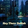 Hey There Delilah - Plain White T's - Cover Sample