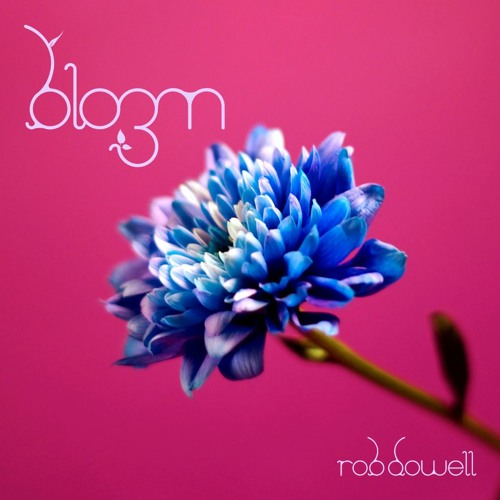 Rob Dowell-Bloom 3