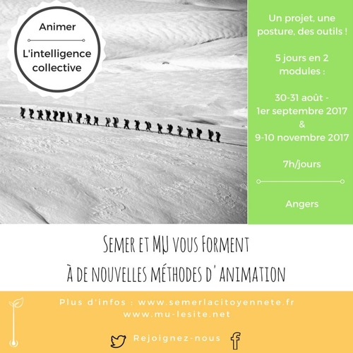 Formation Animer l'intelligence collective