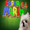 Super Mario 64 borked by Gabe the Dog