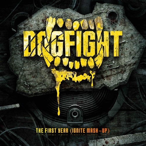 Dogfight - The First Year (Ignite Mashup)