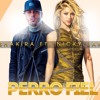 Nicky Jam Ft Shakira Perro Fiel Moya Dj 2017 Mp3