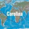 Harry Styles - Carolina (cover)
