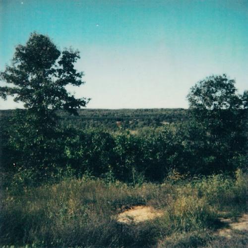 Apollo Vermouth - Reflections Of