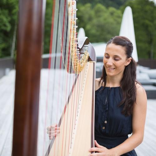 Wedding Song - Sag Einfach JA! - Tim Benzko Cover- Harp Unplugged