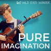 Pure Imagination (Acoustic Cover)