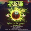 MA FAIZA MAX TOUR @ BLUE FROG WITH INFECTED MUSHROOM MAY 2017