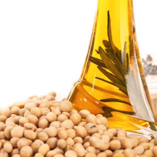La soja en los alimentos de consumo masivo - Ana Clara Martino