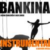 JELENA KARLEUŠA X ACA LUKAS | BANKINA | INSTRUMENTAL X BACKING VOCALS