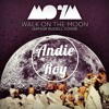 Mansions On The Moon - Walk On The Moon (Andie Roy Remix)