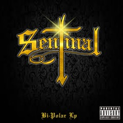 SENTINAL - ON IT FEAT.ELEVATED JAYY
