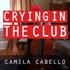 Crying In The Club - Camila Cabello (David Skinner Cello Cover)