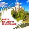 Ljeto U Trakošćanu  - No Name Band i Rajko Suhodolčan