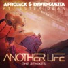 Afrojack & David Guetta feat. Ester Dean - Another Life (DubVision Remix)