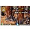 Download الكهف 107 - 110 رمضان 1438ه   الشيخ نورين محمد صديق Mp3