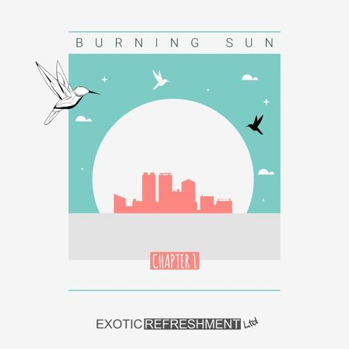 VA - Burning Sun - Chapter 1 incl Nu, Uner, Kastis Torrau, Beatamines, Sabo, Melokolektiv