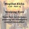 Weeping Eyes (PT14) mp3