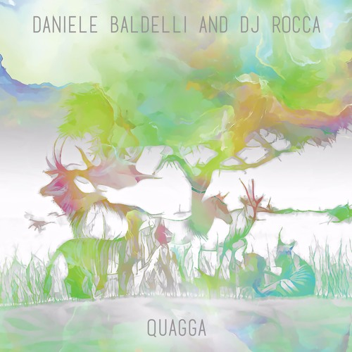 PREMIERE : Daniele Baldelli & DJ Rocca - Quagga