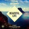 Lost Frequencies feat Sandro Cavazza - Beautiful life (Luis Daniels remix) | FREE DOWNLOAD