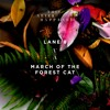 Lane 8 - March Of The Forest Cat
